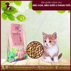 thức ăn hữu cơ cho mèo con