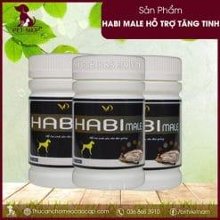 Habi Male tăng tinh chó đực